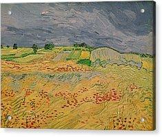 Plain At Auvers Acrylic Print by Vincent Van Gogh
