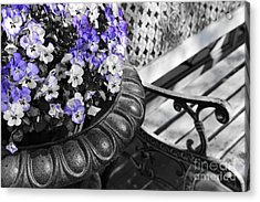 Planter With Pansies And Bench Acrylic Print by Elena Elisseeva