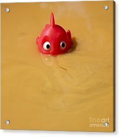 Plastic Fish In Some Polluted Water. Acrylic Print by Bernard Jaubert