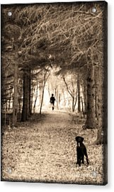 Please Come Back  Acrylic Print by Cathy  Beharriell