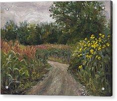 Plein Air - Corn Field Acrylic Print by Lucie Bilodeau