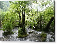 Acrylic Print featuring the photograph Plitvice Lakes by Travel Pics