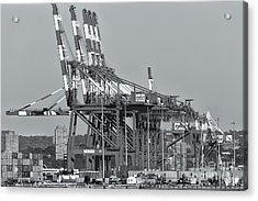 Pnct Facility In Port Newark-elizabeth Marine Terminal II Acrylic Print by Clarence Holmes