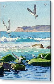 Point Loma Rocks Waves And Seagulls Acrylic Print by Mary Helmreich