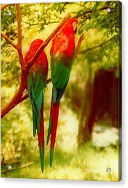 Polly Wants Two Crackers At New Orleans Louisiana Zoological Gardens  Acrylic Print by Michael Hoard