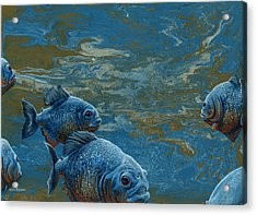 Pond Thugs Acrylic Print by Cara Bevan