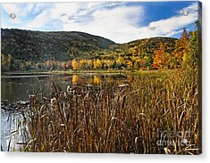 Pond With Autumn Foliage  Acrylic Print by George Oze