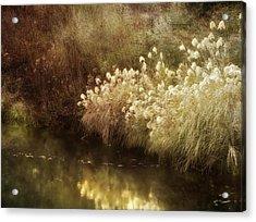 Pond's Edge Acrylic Print by Julie Palencia