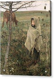 Poor Fauvette, 1881 Acrylic Print by Jules Bastien-Lepage