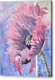 Poppies 2 Acrylic Print by Mohamed Hirji