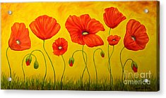 Poppies At The Time Of Acrylic Print by Veikko Suikkanen