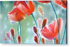 Poppy Field Acrylic Print by Natasha Denger