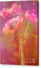 Poppy Passion Acrylic Print by Jan Bickerton