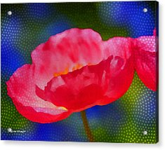 Poppy Series - Touch Acrylic Print by Moon Stumpp