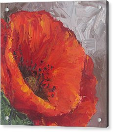Poppy1 Acrylic Print by Susan Richardson