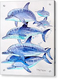Porpoise Play Acrylic Print by Carey Chen