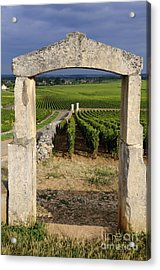 Portal  Of Vineyard.burgundy. France Acrylic Print by Bernard Jaubert