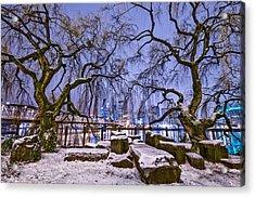 Portland Twin Trees Acrylic Print by Darren  White