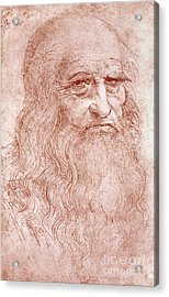 Portrait Of A Bearded Man Acrylic Print by Leonardo da Vinci