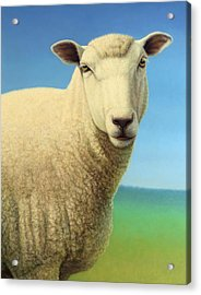 Portrait Of A Sheep Acrylic Print by James W Johnson