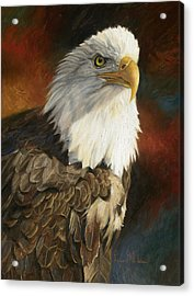 Portrait Of An Eagle Acrylic Print by Lucie Bilodeau