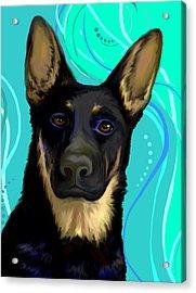 Portrait Of A German Shepherd Dog Acrylic Print by Karon Melillo DeVega