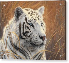 Portrait White Tiger 2 Acrylic Print by Lucie Bilodeau