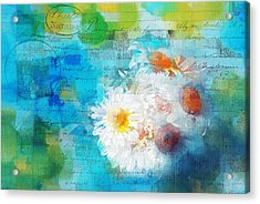 Pot Of Daisies 02 - J3327100-bl1t22a Acrylic Print by Variance Collections