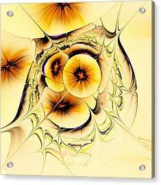 Potpourri Acrylic Print by Anastasiya Malakhova