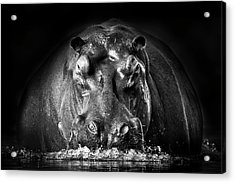 Power Acrylic Print by Gorazd Golob