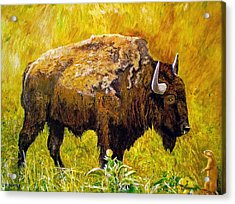 Prairie Companions Acrylic Print by Michael Durst
