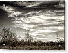 Prairie Winter Sky Acrylic Print by Joan Carroll