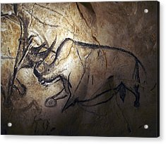Prehistoric Cave Paintings, Chauvet Acrylic Print by Science Photo Library