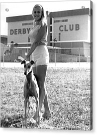 Pretty Girl With Greyhound Acrylic Print by Retro Images Archive