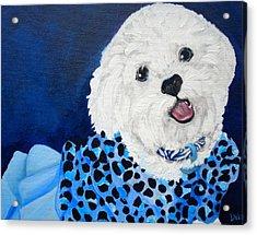 Pretty In Blue Acrylic Print by Debi Starr