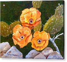 Prickley Pear Cactus Acrylic Print by Janis  Tafoya