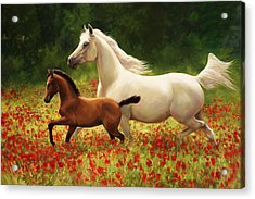 Pride And Joy Acrylic Print by Laurie Hein