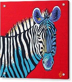 Primarily Zebra Acrylic Print by Dorothy Jenson