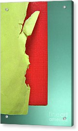 Primary Acrylic Print by CML Brown