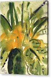 Primroses Acrylic Print by Claudia Hutchins-Puechavy