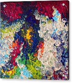 Profusion II Acrylic Print by Anna Villarreal Garbis