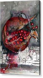 promegranate blooming in Jerusalem Acrylic Print by Elani Van der Merwe