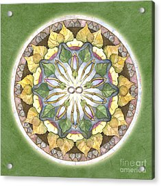 Prosperity Mandala Acrylic Print by Jo Thomas Blaine