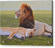 Protecting The Queen Acrylic Print by Aaron Blaise