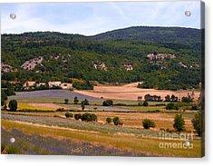 Provence Landscape Acrylic Print by Bob Phillips