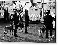 Psni Dog Handlers In Riot Gear And Dogs On Crumlin Road At Ardoyne Shops Belfast 12th July Acrylic Print by Joe Fox