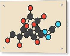 Pufferfish Neurotoxin Molecule Acrylic Print by Molekuul