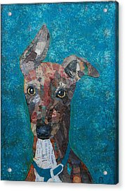 Puppy Love Acrylic Print by Julie  Mortillaro