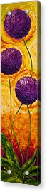 Purple Allium Flowers Acrylic Print by Paris Wyatt Llanso