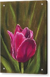 Purple Beauty Acrylic Print by Anastasiya Malakhova